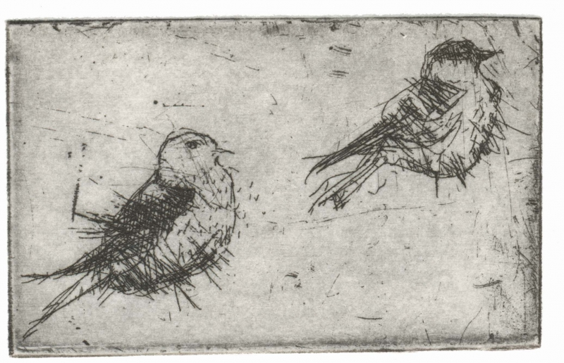 birds_intaglio_35x55mm