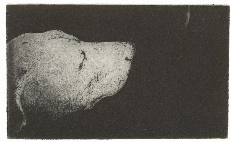 dog_intaglio_33x63mm